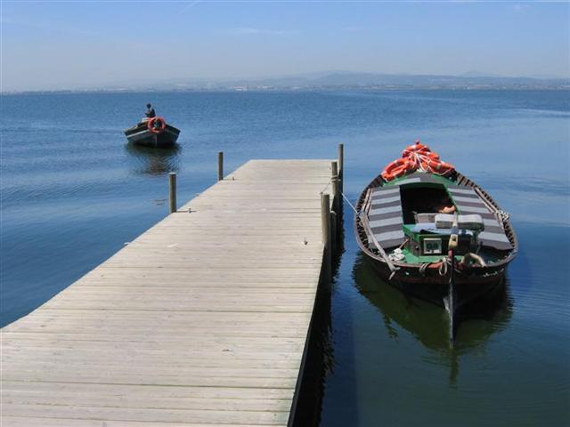Paseo en barca en La Albufera